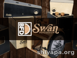 Download FXpansion BFD Swan Percussion » Best music software for you