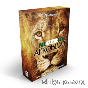 Download LBandyMusic Nigeria Afrobeat WAV MiDi AiFF Sylenth1