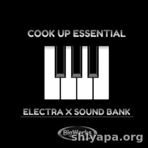 Download Big Werks Cook Up Essentials (Electra Bank) » Best